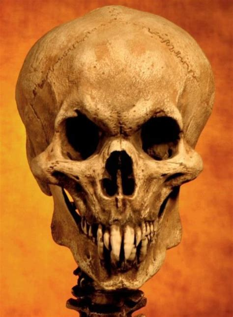 Vampire Skull Pictures, Photos, and Images for Facebook