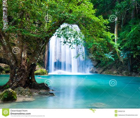Cliff Of Waterfall In Deep Forest Royalty Free Stock