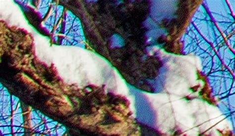 Getting it Right in the Digital Camera : Chromatic Aberration