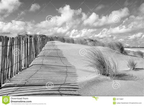 Dune Landscape And Fence In Black And White Royalty Free